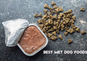 8 Best Wet Dog Foods 2020 – Reviewed By Dog Trainer